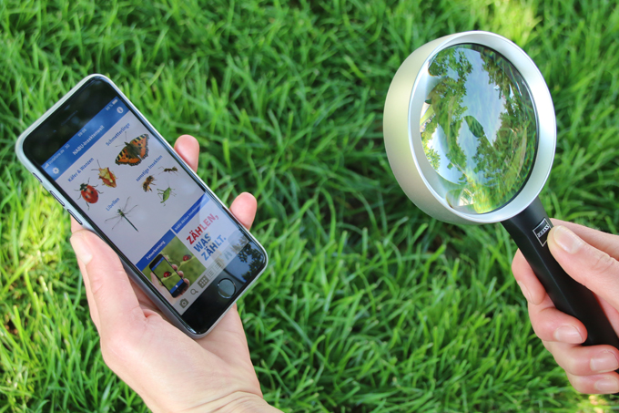Über die NABU App können die Sichtungen direkt gemeldet werden - Foto: NABU/Eric Neuling